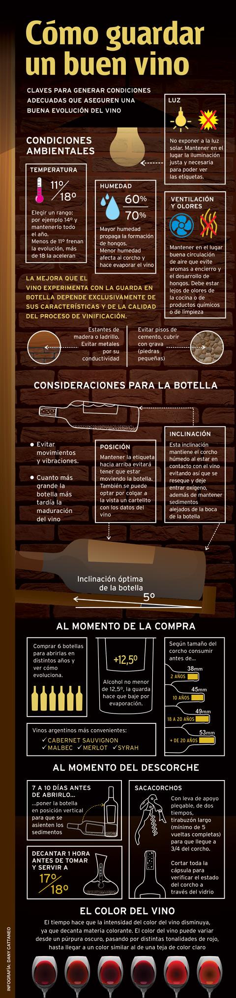 guarda vinos infografia